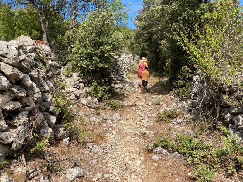 Cesta na Grabrovicu kde nepotkáte ani živáčka