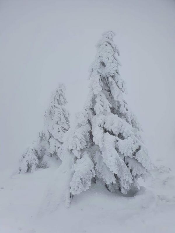 Nikde nikdo...... jen sníh a mráz