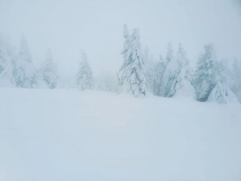 Takto čaruje paní Zima a pán hor