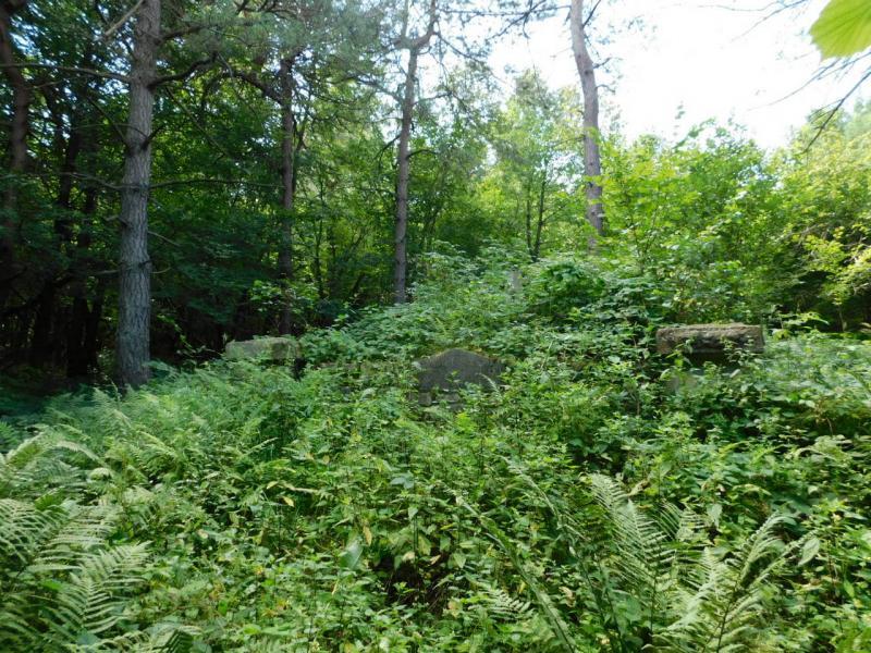 Hřbitov č. 2 – Ożenna